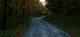 Photo photo-chemins-forrestiers : chemin-forrestier : 22376