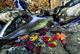Autumn Leaves Near Waterfall nature de                   Jannice52 provenant de Photo Feuillage
