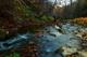 Photo photo-creek : creek : 23087