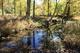 Photo photo-creek : creek : 23092