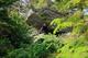 Photo photo-faune : faune : 23259