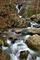 Photo photo-cascades : cascades : 24631
