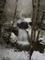 Scenic Winter Waterfall Soft Snow nature de                   Camilia65 provenant de Photo Cascades
