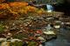 Photo photo-cascades : cascades : 24655